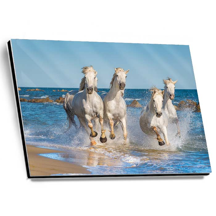 GalleryPrint High-Gloss auf Alu-Dibond 90 x 140 cm