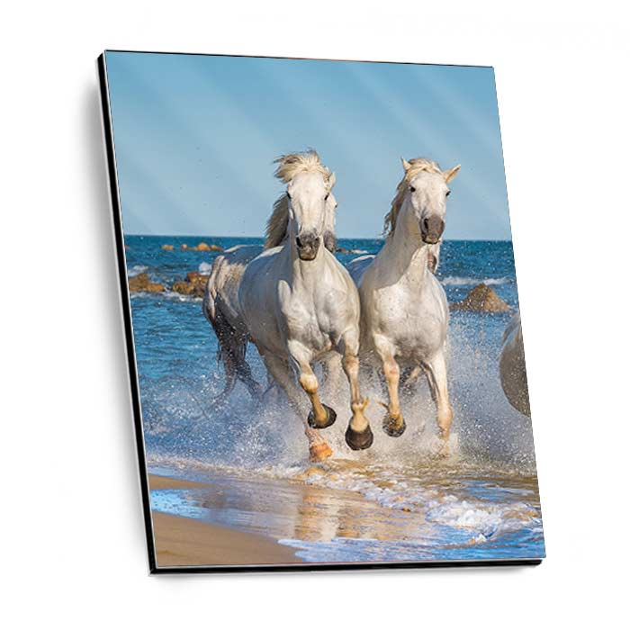 GalleryPrint High-Gloss auf Alu-Dibond DIN A5 (14,8 x 21 cm)